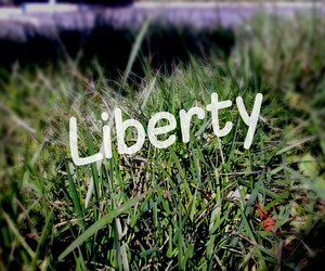 free and liberty image