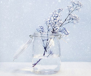 flowers, jar, and winter image