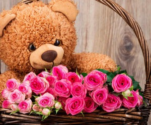 rose, bear, and pink image