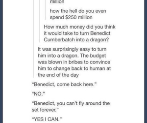 dragon, smaug, and benedict cumberbatch image