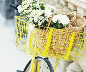 flowers, bike, and yellow image