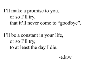 love, poem, and quote image