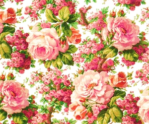 flower, background, and pattern image