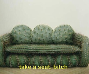 bitch, funny, and cactus image