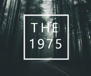 band, forest, and grunge image