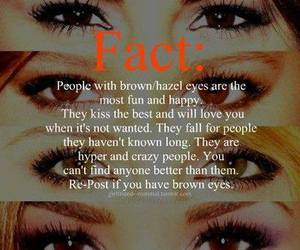 eyes, facts, and brown eyes image