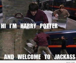 harry potter and jackass image