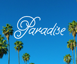 paradise, blue, and palm trees image