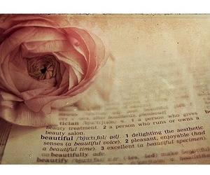 beautiful, rose, and book image