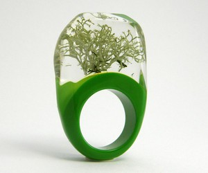 jewelry, rings, and nature image