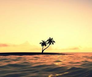 sea, sunset, and palms image