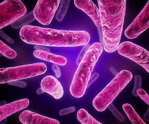 bacteria and colours image