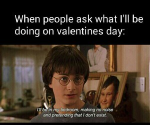 alone, funny, and valentines day image