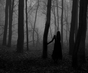 dark, forest, and alone image