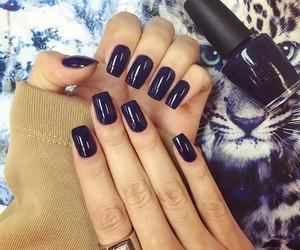 nails, blue, and nailpolish image
