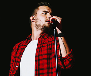 liam payne, otra, and niall horan image
