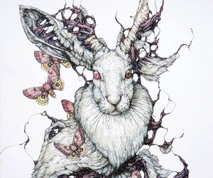 rabbit, art, and bunny image