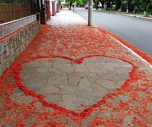 flowers, hearts, and red image