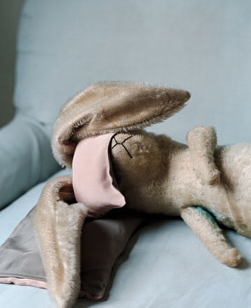 bunny and tired image