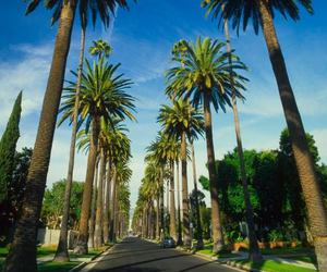 amazing, Beverly Hills, and california image