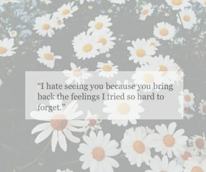 feelings, love, and forget image