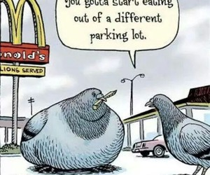fries, McDonald's, and pigeons image