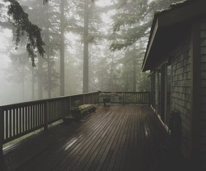 forest, house, and fog image