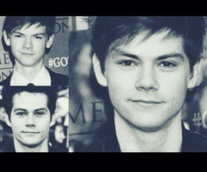 dylan, newt, and thomas image