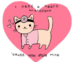 cat, haha, and valentine image