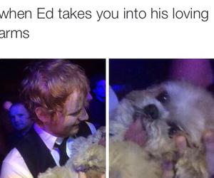 ed sheeran, funny, and cute image