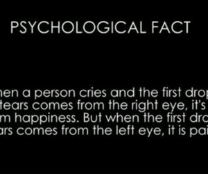 cry, fact, and Right image