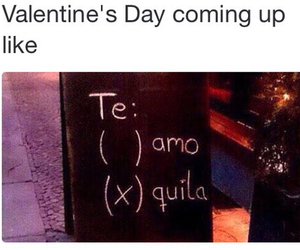 tequila and love image