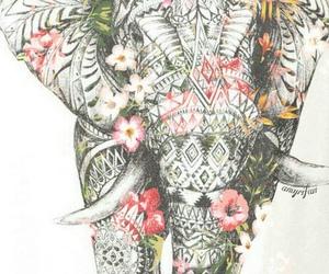 elephant, flowers, and elefante image