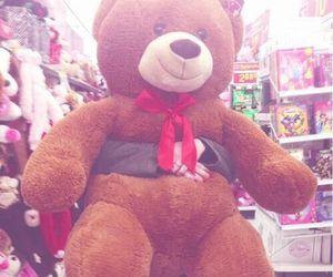 teddy bear and bear image