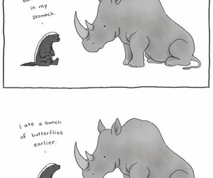 butterfly, animal, and funny image