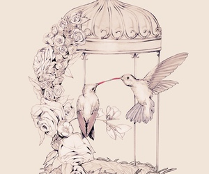 birdcage, birds, and flowers image