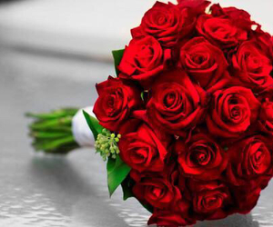 redroses image