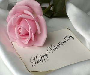 rose, valentine, and pink image