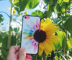 colorful, flowers, and sunflower image