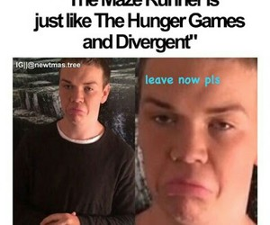 funny, gally, and maze runner image