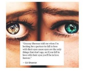 eyes, love, and ed sheeran image