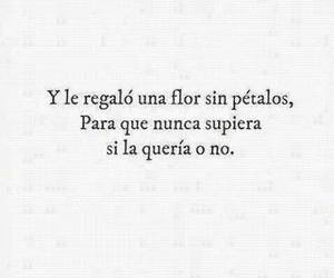 love, frases, and flor image