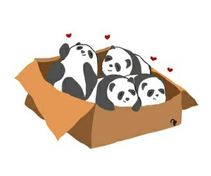box, panda, and cute image