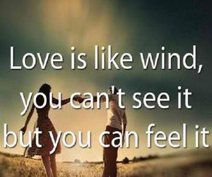 feel it, wind, and see it image