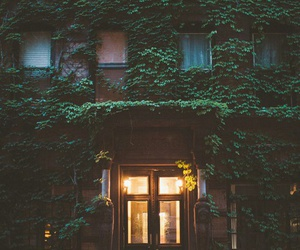 house, light, and green image