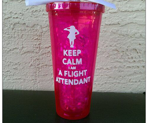 flight attendant image