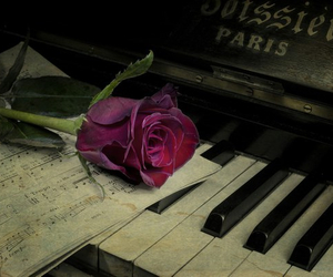 rose, piano, and vintage image