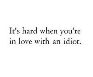 quote, love, and idiot image