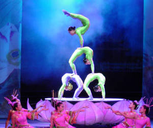 acrobatic, colorful, and cool image
