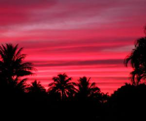 pink, red, and sky image